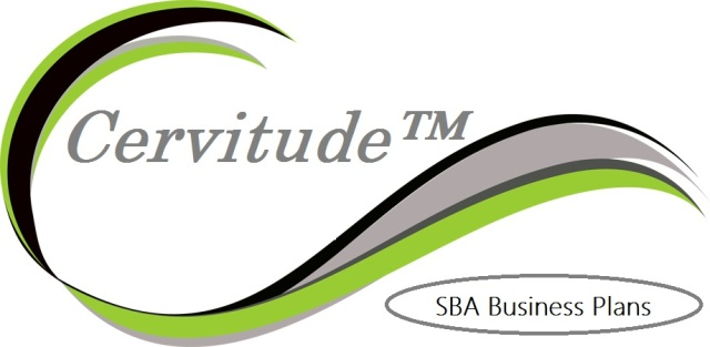 SBA Business Plan Writing Service