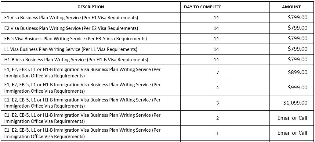 E1 business plan