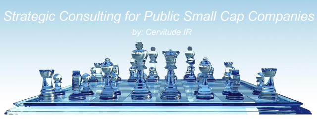 Strategic Consulting for Public Small Cap Companies