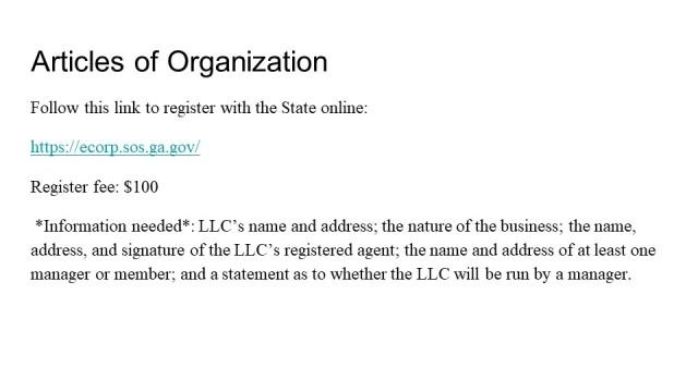 Forming an LLC Georgia 3